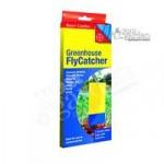 Greenhouse FlyCatcher sticky traps – pack x 7